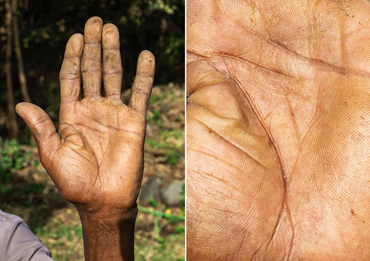 15 впечатляющих фото рук людей, которые посвятили всю жизнь одному делу