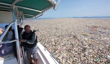 Целые моря пластикового мусора: райские уголки Карибов настигла печальная участь