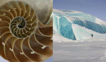 Маленькие чудеса природы, которым не помешает научное объяснение