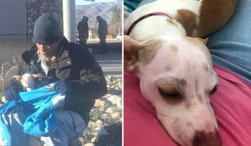 Бездомный спас собачку от гибели, а она поменяла его жизнь