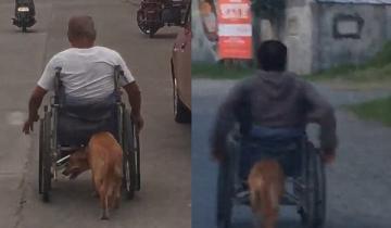 Трогательные кадры: пес подталкивает инвалидную коляску хозяина, помогая ему двигаться