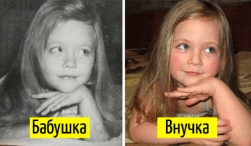15 фото, которые показывают, что гены решают все