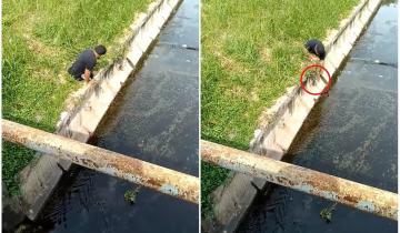 Пример искренней доброты: параолимпиец спас котенка из глубокой канавы