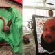 Пользователи соцсетей поделились самыми странными подарками, которые им дарили на новогодние праздники