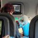 Американка удивила пассажиров авиалайнера, взяв на борт необычного спутника