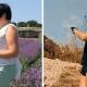 Ева Кац: «Как я сама себя превратила в «тетку», а потом сбросила 15 килограммов»