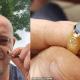 За найденное в лесу средневековое кольцо мужчине на аукционе заплатили 30 000 фунтов стерлингов