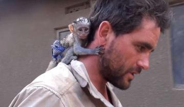 Мужчина спас обезьянку из огня, и она ответила ему благодарностью