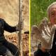 70-летний ветеран без ног смог за 19 лет посадить 17 тыс деревьев