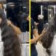 Девушка распрощалась с роскошными волосами, но итог не понравился никому