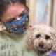 Хозяева собачки ушли из жизни из-за коронавируса. Но она нашла новый дом