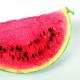 Как выглядели привычные нам овощи и фрукты в древности