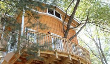 Дед решил построить для внуков домик на дереве, но увлекся