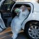Девушка вышла замуж за друга детства, зная, что жить ей осталось несколько месяцев