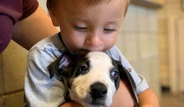 Мальчику с патологией подарили щенка с таким же заболеванием