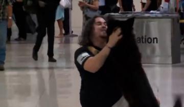 Пассажиры аэропорта были растроганы до слез, когда увидели встречу хозяина со своим псом