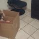 Молодой отец пожаловался, что воспитывает не дочку, а кошку. И получил резонный ответ.