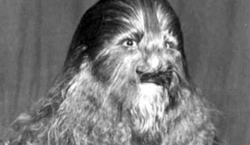 История Стефана Бибровского, который выступал в цирке и которого прозвали «мальчиком-львом»