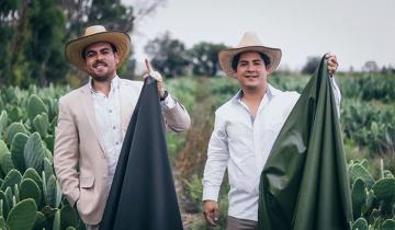 Эко-кожа из кактусов удовлетворит потребности модников и позволит спасти зверушек