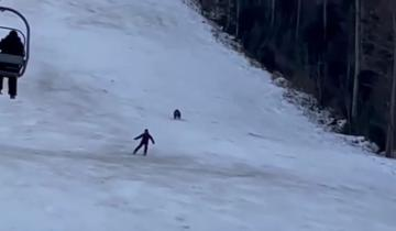 Медведь погнался по склону за лыжником на курорте, но парень не растерялся