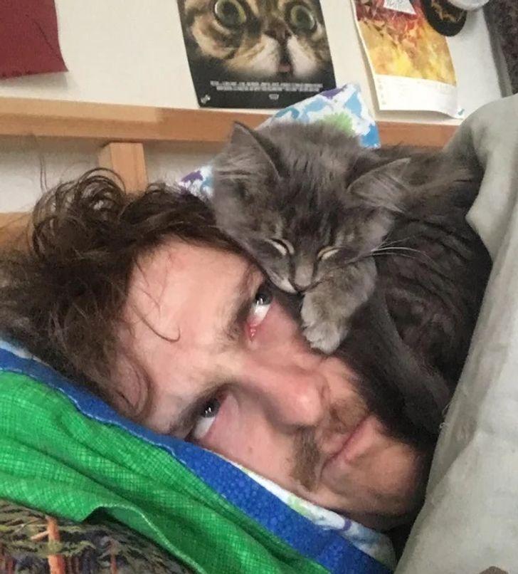 16 мастер-классов от зверушек о том, как и где сладко спать