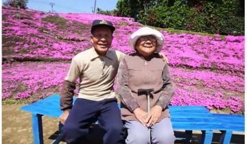 Мужчина посадил у дома 1000 цветов, чтобы спасти жену от депрессии