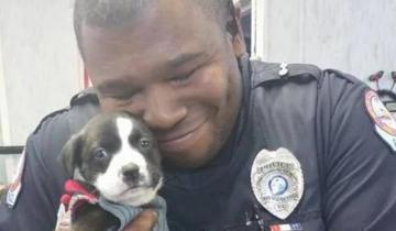 Ночной вызов привёл полицейского к крошечному щенку