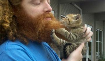 Неожиданный, но веский аргумент, зачем мужчинам нужна борода