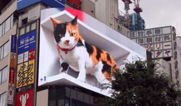 На улице в Токио поселился гигантский гиперреалистичный котенок