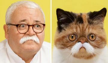 17 доказательств, что у каждого котика есть человек-двойник, и наоборот