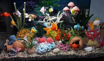 Женщина связала целый аквариум, сидя на карантине